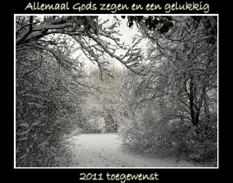 De beste wensen voor 2011